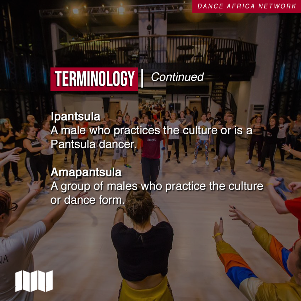 Terminology Ispantsula A male who practices the culture or is a Pantsula dancer Amapantsula a group of males who practice the culture or dance form
